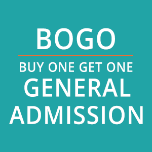 Picture of 2020 Irish Fest O'BOGO General Admission Tickets